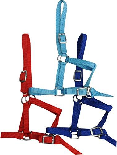 AMKA –Cabestro para Minis Hetty Mini Pony Potro, Madera Caballo Blau| Potro–Cabestro Shetty–Brida de Nylon con Cuerda para Corta