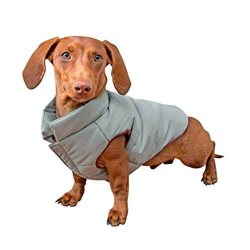 DJANGO Puffer Dog Jacket and Reversible Cold Weather Dog Coat with Full Coverage and Windproof Protection (Medium, Sage Green/Buffalo Plaid)