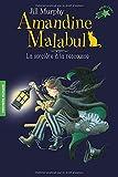 Amandine Malabul - La sorcière à la rescousse - FOLIO CADET PREMIERS ROMANS - de 8 à 10 ans