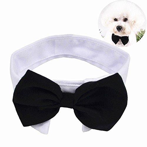 Yumsum - Halsband mit Fliege für Haustier, für Hund und Katze, mit einstellbarem Klettverschluss, weißer Kragen
