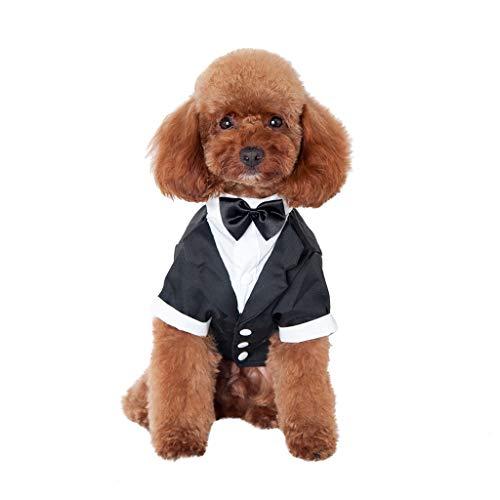 BoyYang Haustier Hund Kleidung Hochzeit Anzug Tuxedo Fliege Gentleman Kleid Kostüm für Kleine mittelgroße Hunde oder Katzen Teddy Schnauzer Chihuahua Puppy Coat Katze Jacke Heimtierbedarf(L,Schwarz