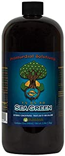 Sea Green 32 oz