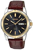 Seiko Men's SNE102 Stainless Steel Solar Watch with Brown Leather Strap, Multicolor dial