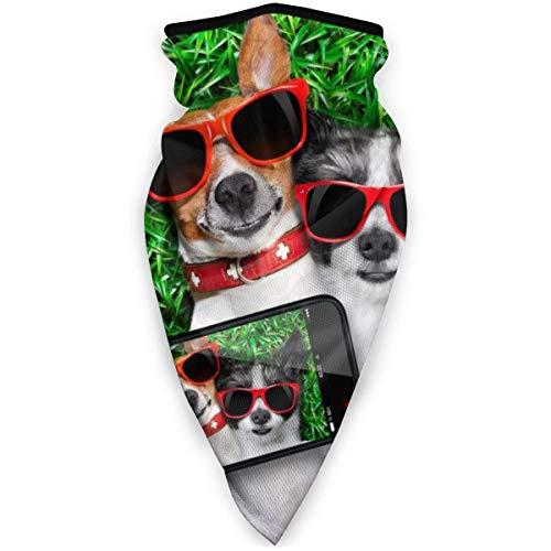 Deportes Pañuelo en la Cabeza Dos Perros Gafas de Sol Rojas en Prado Verde Al Aire Libre Cara a Prueba de Viento Pañuelo en la Cabeza Pasamontañas Esquí Pañuelo Pañuelo Pañuelo Pañuelo Hombres Mujer