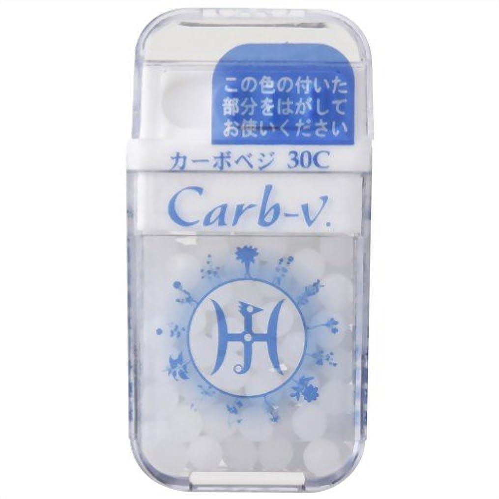 無声で法令折ホメオパシージャパンレメディー Carb-v.  カーボベジ 30C (大ビン)