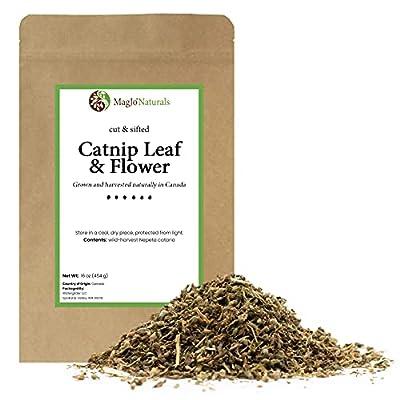 MagJo Naturals Farm Direct Catnip | Freshest Available | Bulk Bag (Full Pound)