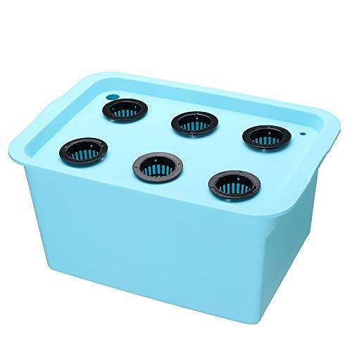Bangxiu Kit de Cultivo hidropónico Kit del Sistema hidropónico 220V 6 Agujeros DWC aeróbico sin Suelo for Cultivo Interior el establecimiento del Agua Grow Box (Color : Azul, tamaño : Un tamaño)