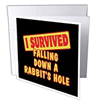 Dooni Designs Survive Sayings – I Survived Falling Down A Rabbits穴Survival Pride andユーモアデザイン – グリーティングカード Set of 6 Greeting Cards