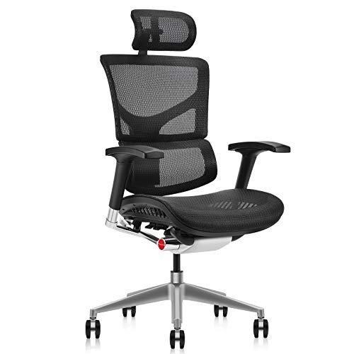 MOOJIRS Ergonomischer Bürostuhl: Anhebbare Stuhllehne - Dynamische Lendenwirbelstütze - Einstellbare Kissentiefe - Verstellbare 4D-Armlehnen - Vollaluminiumrahmen - Standard-Teppichrollen
