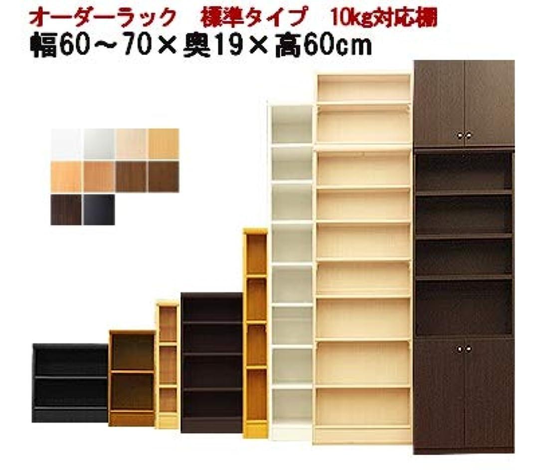 疎外するだますバンジージャンプRooms カラーボックス オーダーラック 2段 扉 壁 日本製(標準) 奥行31 高さ60cm 幅(cm):67 ホワイト