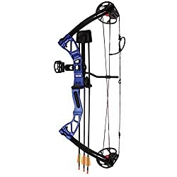 Best Compound Bow for the Money - 2019 Reviews and Tips