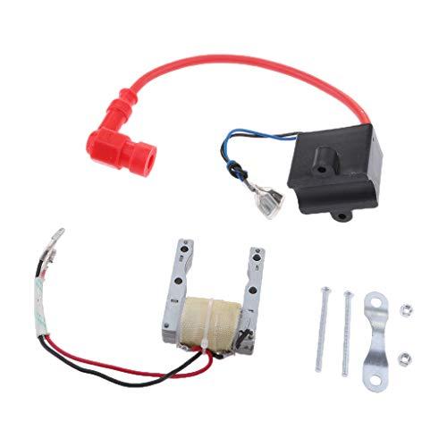 D DOLITY 1Pieza Bobina magnética CDI Bobina de Encendido magnético tostator Buena conductividad eléctrica para 49–80CC de 2del Rodillo