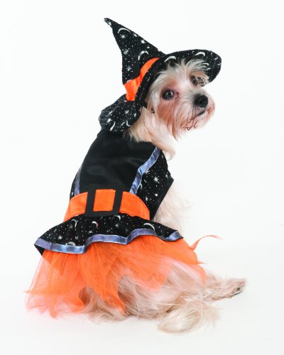 Disfraz de bruja para perros. Talla XS.