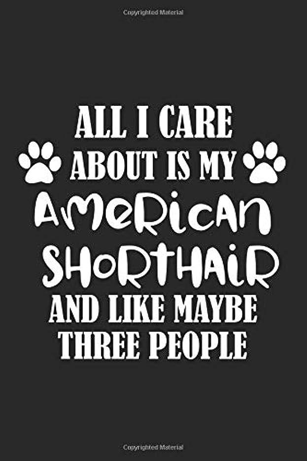飾り羽救急車勃起All I Care About Is My American Shorthair And Like Maybe Three People