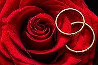 ローズ 5Dダイヤモンドペインティングキット、バラの花のバレンタイン・プレゼント 家の装飾のためのDIYダイヤモンドアートフルドリルクロスステッチ刺繡工芸品40*50cm
