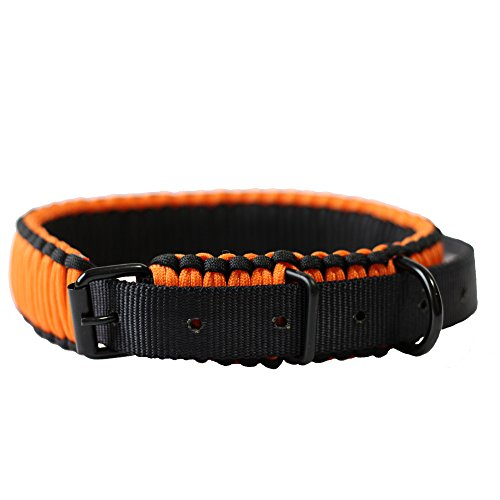 HLHRaibow Strong Metal Buckle Large Dog Collar