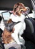 Hunde Auto Sicherheitsgurt, Hundegurt Sicherheitsgeschirr, Anschnallgurt für kleine Hunde - 5