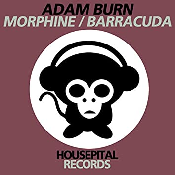 Morphine / Barracuda