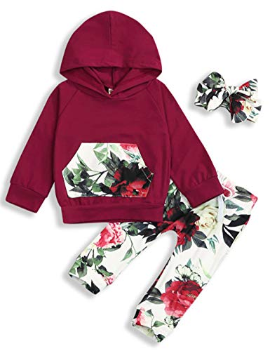 Baby Girls Long Sleeve Flowers Hoodie Tops and Pants Outfit with Pocket Headband 6-12 Months