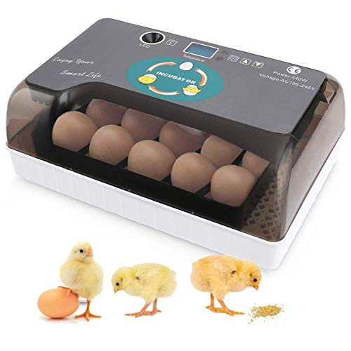 Sailnovo Egg Incubator,9-35 Eier Brutmaschine Vollautomatisch Hühner Eier Brutgerät, mit Effizienter LED Beleuchtung Feuchtigkeitsfest Energiesparend Kühltechnologie