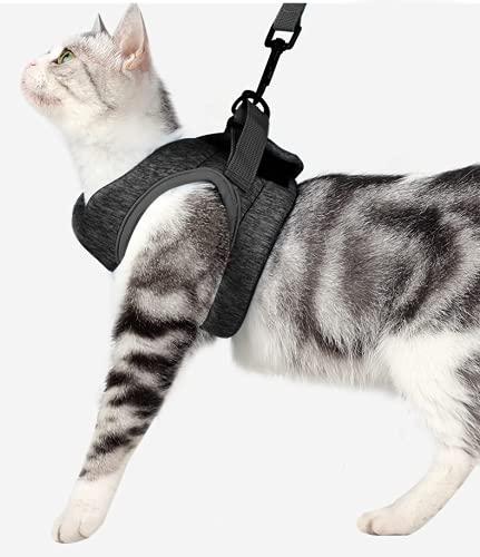 Crea CLEA Katzengeschirr ultraleicht und komfortabel, mit Leine. Tragetasche für Katzen und ein buntes Spiel (L, Schwarz)