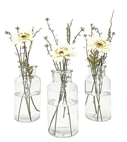 Homes on Trend Set mit 3 Blumenvasen im Vintage-Stil, klare Flasche aus recyceltem Glas, umweltfreundlich, für Hochzeiten, Tischdekoration, Tischdekoration, Heimdekoration (drei mittelgroße Flaschen)