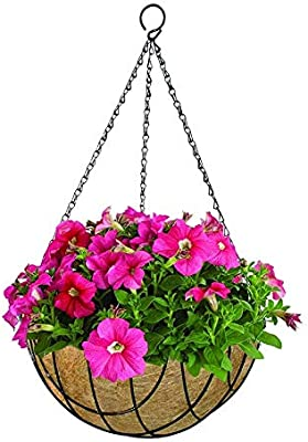 Live Green Gardening Pots Metal Big Holes Hanging Durable Basket Pot 12 Inch with Coir & Chain (Pack of 5 Pot Black)