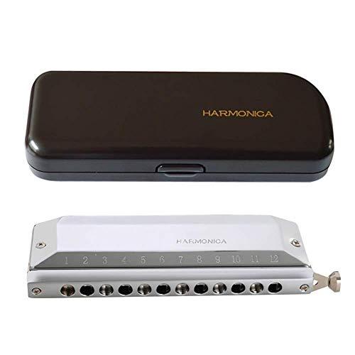 Mondharmonica 12-holes 48-toons mondharmonica chromatische mondharmonica