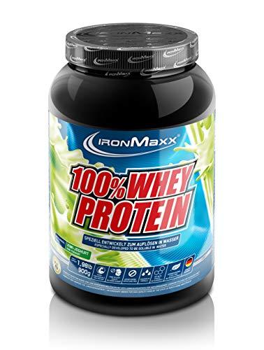 IronMaxx 100% Whey Proteinpulver – Wasserlösliches Whey Protein für Eiweißshake – Proteinshake mit Kiwi-Joghurt Geschmack – 1 x 900 g Dose