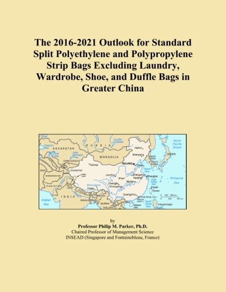 プラグ地平線道路The 2016-2021 Outlook for Standard Split Polyethylene and Polypropylene Strip Bags Excluding Laundry, Wardrobe, Shoe, and Duffle Bags in Greater China