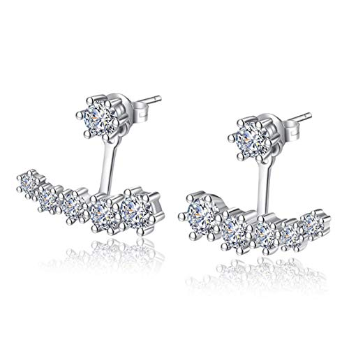 Xx101 Luxury Sterling Silver Earrings, Six-claw Zirconia Front And Back Double-sided Leaf Earrings, Female Pendant Nixx0