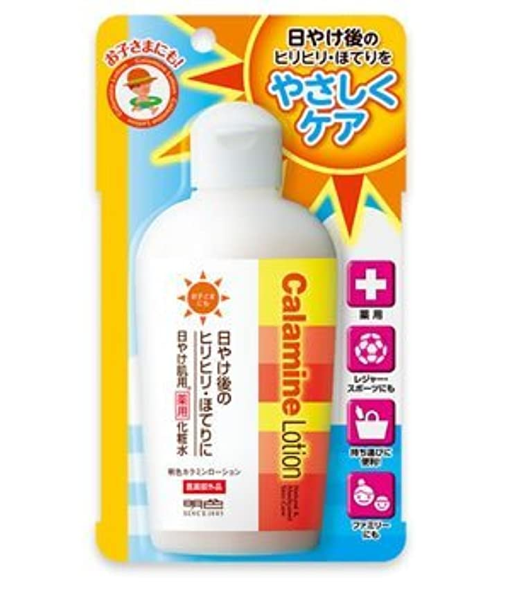 発見辛なマーチャンダイジング(明色)カラミンローション155ml(医薬部外品)