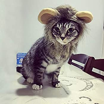 Rameng Costume de Lion pour Petit Chien Chats Chapeau Crinière Déguisement Mane Cheveux Perruque (Cafe)