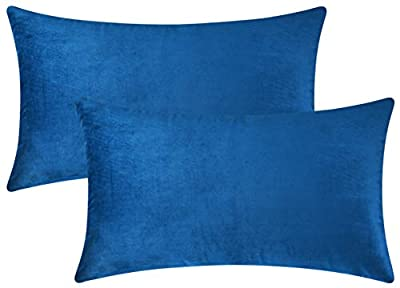 Mixhug Set of 2 Cozy Velvet Decorative Throw Pillow Covers for Couch and Bed