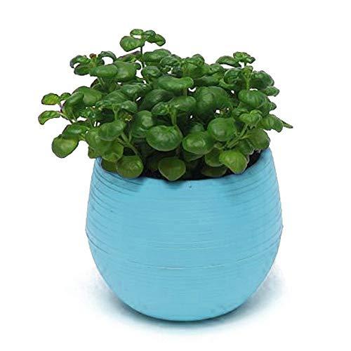 NA Vase Bunte Runde Plastikpflanze Blumentopf Garten Home Office Dekor Pflanzer Desktop Blumentöpfe Blau
