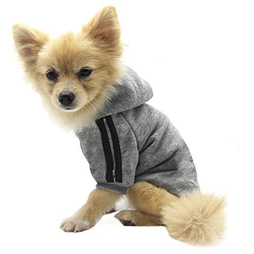 QiCheng&LYS Dog Hoodie Ropa, Mascota Cachorro Gato algodón Lindo cálido Sudadera con Capucha suéter (XL, Gris)