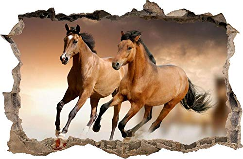 Pegatinas de pared Etiqueta de la pared del caballo Agujero en la etiqueta de la pared Vinilo decorativo mural Póster Arte 3D Mural 50x70cm