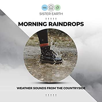 ! ! ! ! ! Morning Raindrops Weather Sounds from the Countryside ! ! ! ! !
