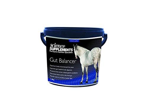 Trilanco Unisex's Science Supplements Gut Balancer, Clear, 1.3 kg