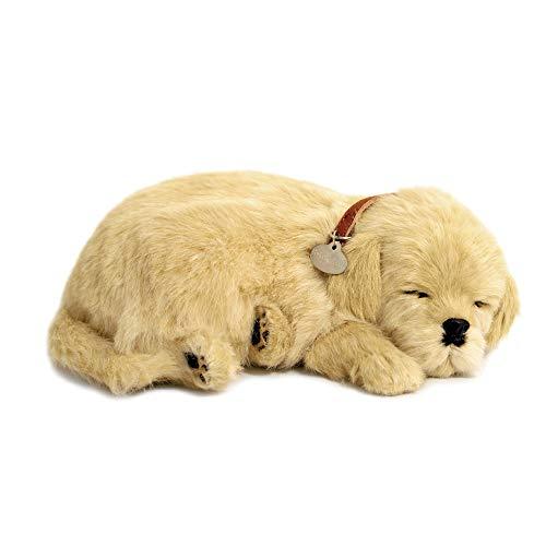 Perfect Petzzz - 4908 - Plüsch - Hund Golden Retriever