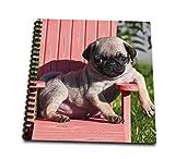 3dRose USA, California. Pug Puppy Slouching en un Poco Rojo césped Silla.-Mini Bloc de...