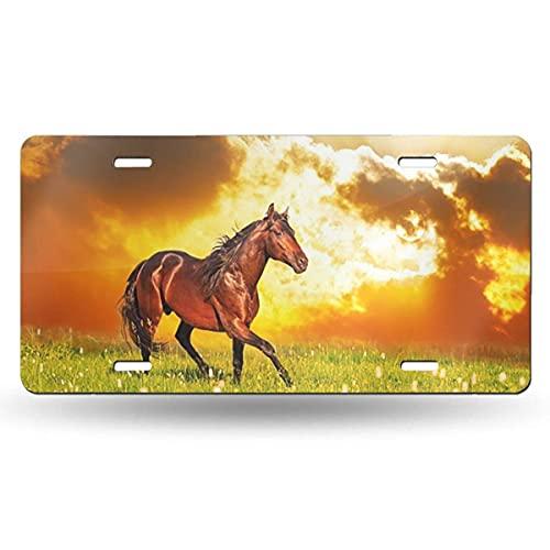 Hdadwy Horse Skips on A Meadow - Cubierta para Placa de matrícula de 12 x 6 Pulgadas, Placas de Aluminio novedosas, Etiqueta Decorativa de vanidad para Placa Frontal de Coche para Mujeres y niñas