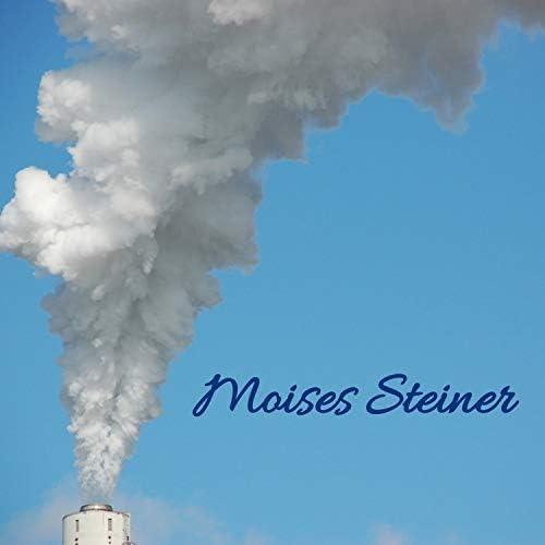Moises Steiner