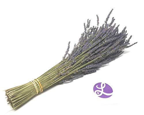Findlavender - Lavender Dried Premium Bundles - 18 to 22' Guaranteed! - 130 to 150 Stems - Can Be Used for Any Ocassion - Perfect for Your Wedding! - 1 Bundle Pack