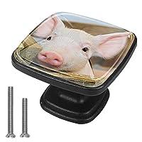 キッチンキャビネットノブ4個セット-プルノブ引き出しとドレッサーハンドル- 赤ちゃん豚