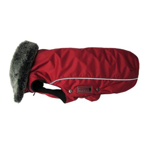 Wolters   Winterjacke Amundsen in Rot   Rückenlänge 32 cm