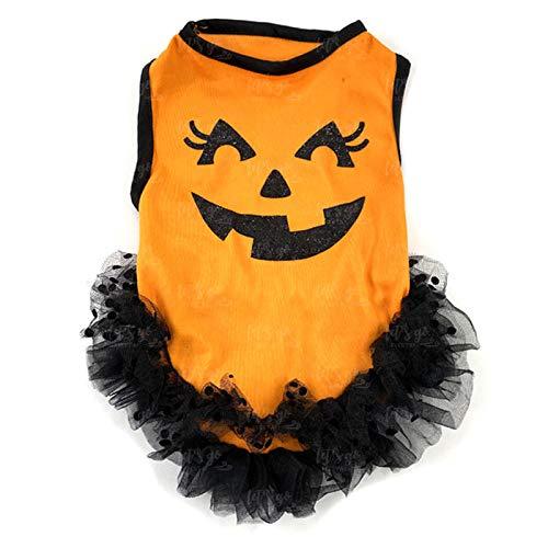 Disfraz Perro Halloween Calabaza Tut (M) (+ Tallas) Accesorio Mascotas