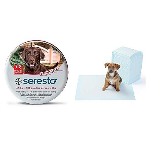 Seresto Collare Cani Medio/Grande > 8 kg, 70 cm + AmazonBasics - Tappetini igienici assorbenti per animali domestici, misura standard, 100 pz