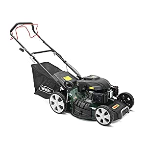 Webb Classic WER510SP Petrol Mower