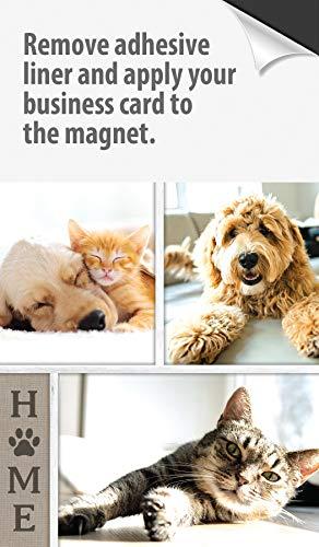 Calendrier de style feuille de réfrigérateur pour carte de visite magnétique 2021 - Boîte de 100, double face, comprend des enveloppes, un aimant pour carte de visite à peler et coller, un excellent outil de marketing (Amis à fourrure)